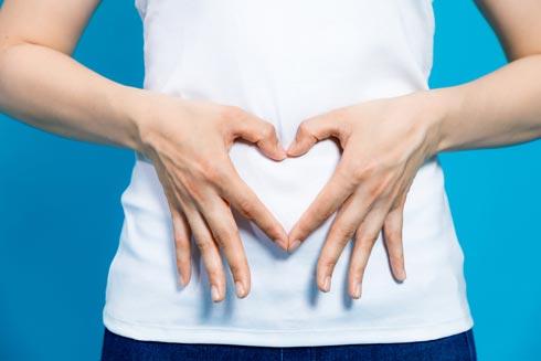 フルーツグラノーラは腸内の乳酸菌の餌になる